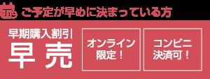 ticket_haya