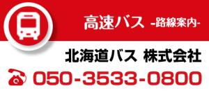 h3_kakuchi